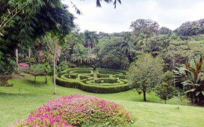 Else Kientzler Botanical Gardens, Sarchí