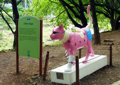 Cali Colombia: Pink cat statue