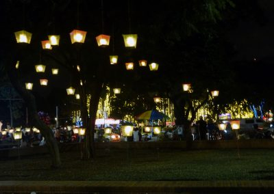 Cali Colombia: Pretty lantern like lights hanging in the trees.