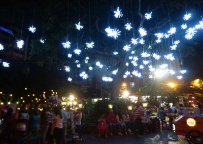 Cali Colombia: Snowflake lights in the trees.