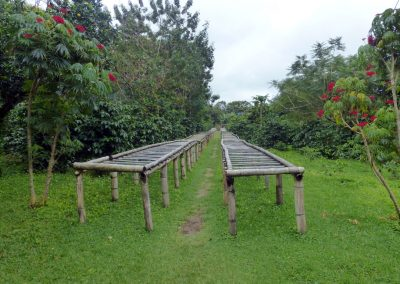 Finca dos Jefes: drying tables