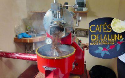 Finca Dos Jefes Coffee Tour, Boquete Panama