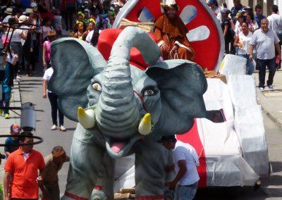 Fiesta de Reyes: How do you turn an elephant?
