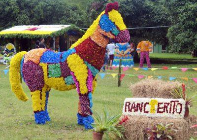 Volcan Flower Festival: horse