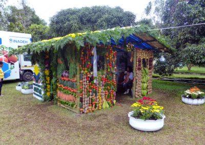 Volcan Flower Festival: veggie house